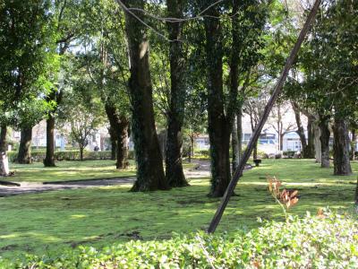 公立大学の庭