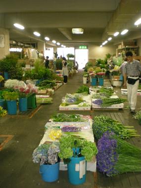名古屋生花市場2