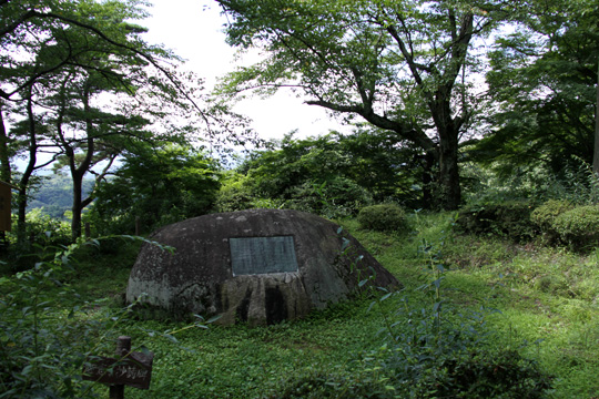 20090812_nihonmatsu_castle-27.jpg
