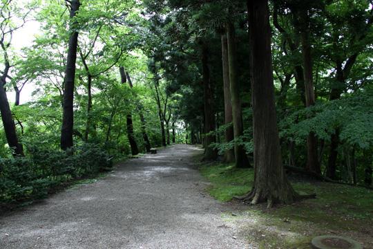 20090814_kubota_castle-19.jpg