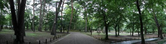 20090814_kubota_castle-21.jpg