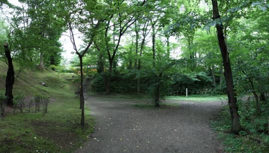 20090814_kubota_castle-31.jpg