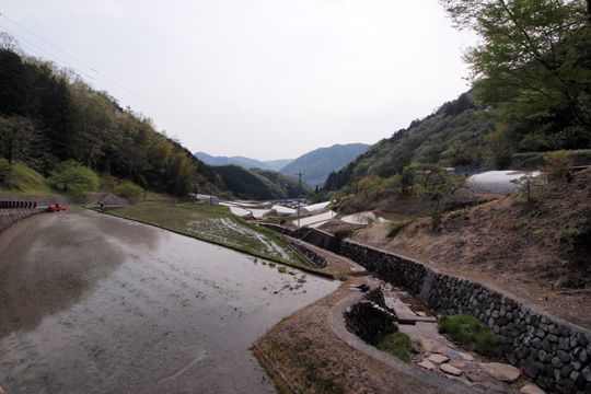 20110430_bicchu_matsuyama_castle-123.jpg