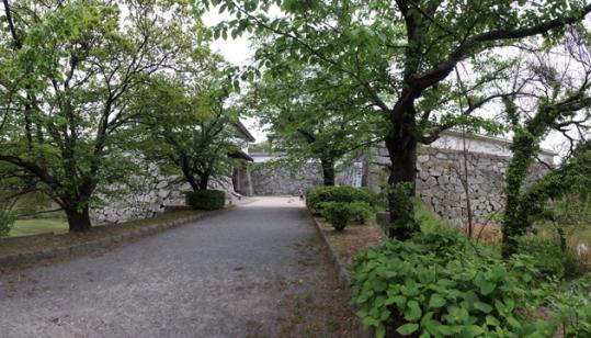 20110503_fukuoka_castle-104.jpg