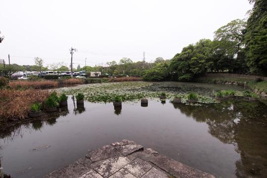 20110503_fukuoka_castle-12.jpg