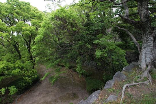 20110503_fukuoka_castle-17.jpg