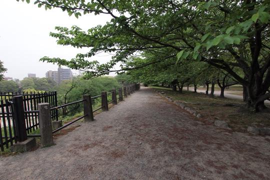 20110503_fukuoka_castle-32.jpg