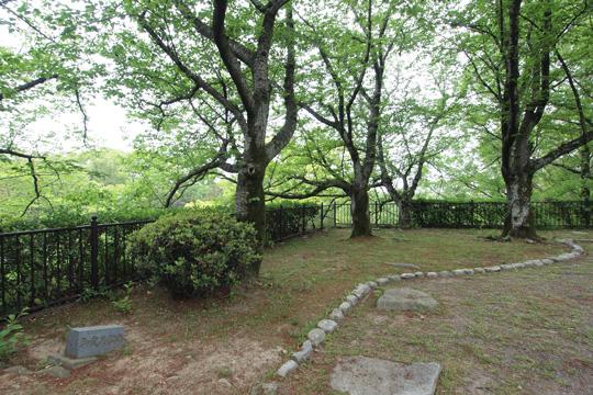 20110503_fukuoka_castle-51.jpg