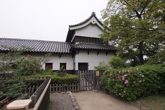 20110503_fukuoka_castle-76.jpg