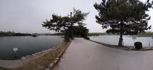 20110503_ohori_park-22.jpg