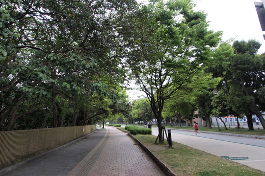 20110503_ohori_park-23.jpg