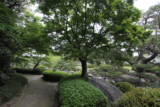 20110503_ohori_park-42.jpg