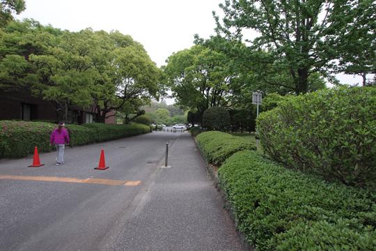 20110503_ohori_park-48.jpg