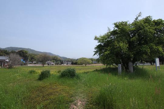 20110504_dazaifu-32.jpg