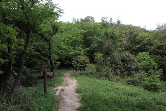 20110504_iawaya_castle-19.jpg