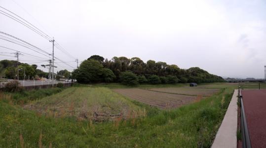 20110504_mizuki-09.jpg