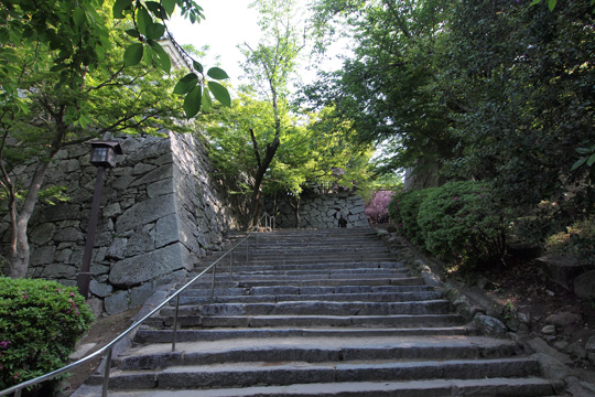 20110505_karatsu_castle-15.jpg