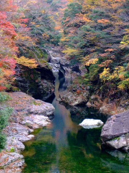 面河渓の紅葉02