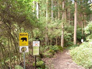 自然観察の森1