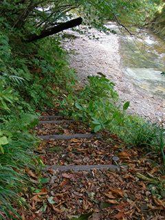 二口渓谷自然歩道3