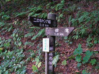 二口渓谷自然歩道4