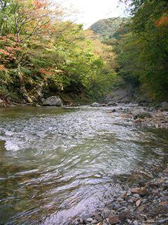 二口渓谷自然歩道2