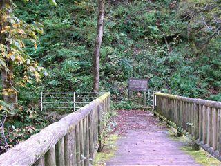 二口渓谷自然歩道11