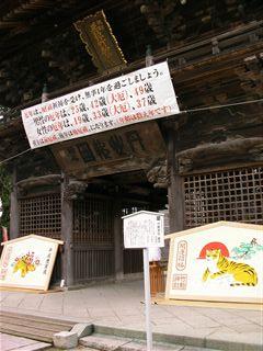0912竹駒神社桜1