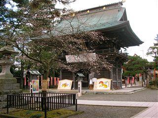0912竹駒神社桜3