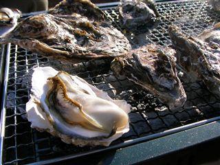 松島牡蠣まつり7