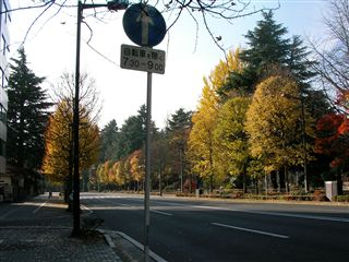 200911櫻ヶ岡公園6