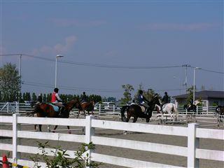 乗馬クラブ2