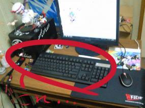 NEC_0404_20100131221040.jpg