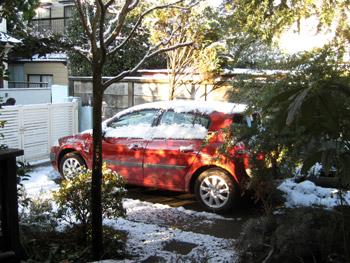 朝の雪景色