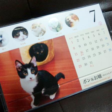 ニャイスブックカレンダー2012年7月はボンとお嬢です!