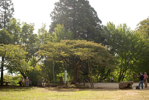 20091003-12.jpg