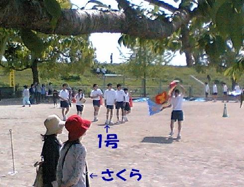 20090508.jpg