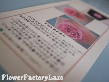 042+(2)_convert_20120529152212.jpg