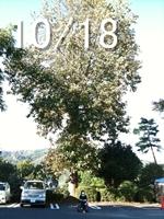 20091031-04.jpg