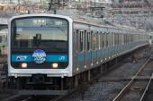 100119-JR-E-209-sayonara-HM-shinagawa-1.jpg