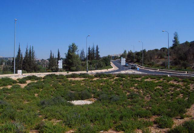 israel34d.jpg