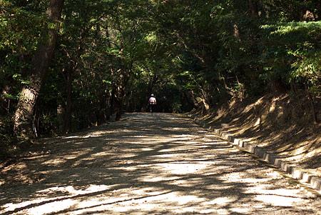 森林公園1-9