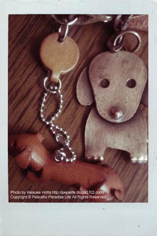 犬のキーフォルダー
