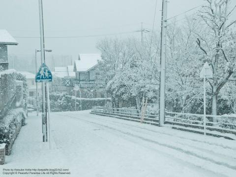 雪が降る町、岡津町 1