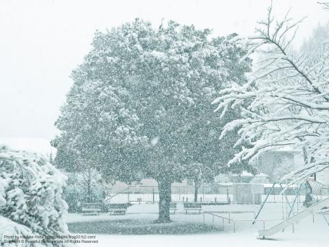 雪が降る町、岡津町 3