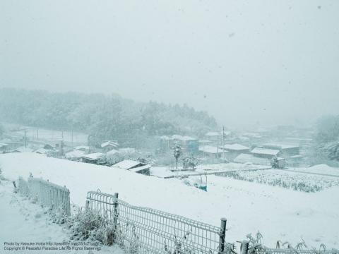 雪が降る町、岡津町 6