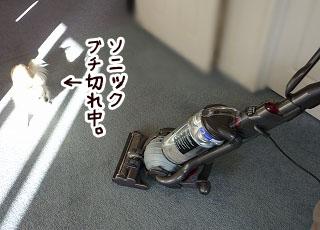 s-0912147 copy