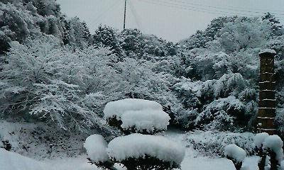 宏之旅立ちの朝(H21.1.24)