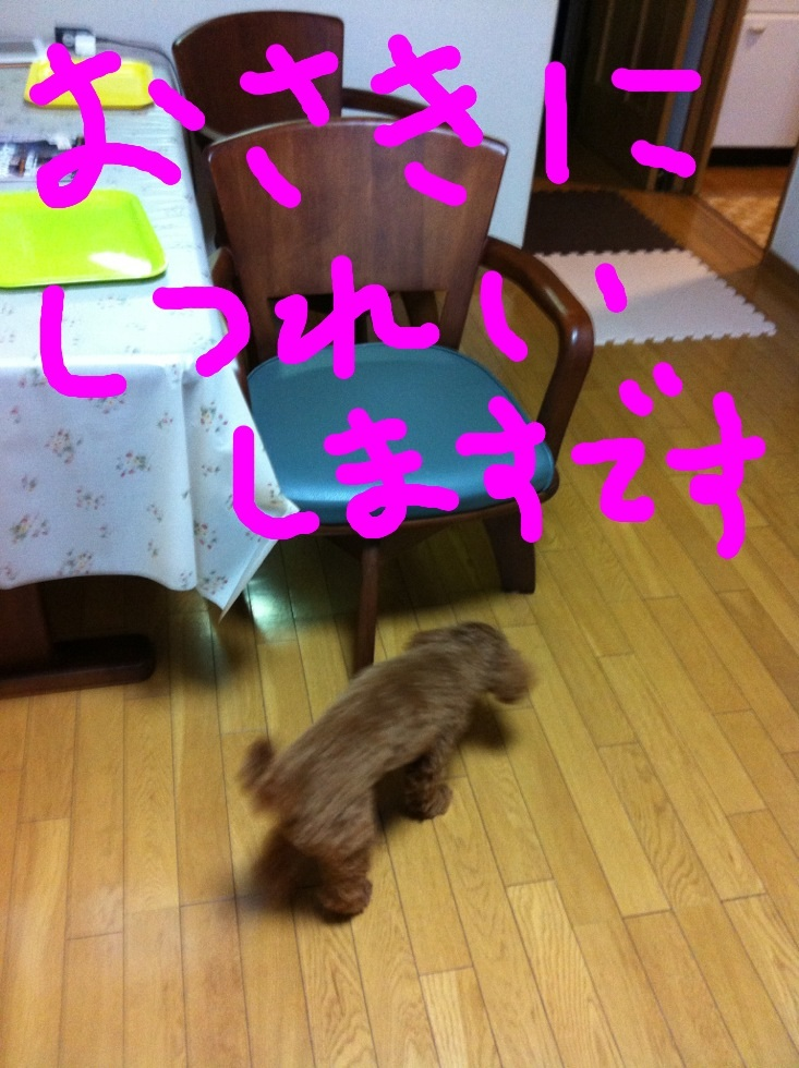 image_20120925235013.jpg