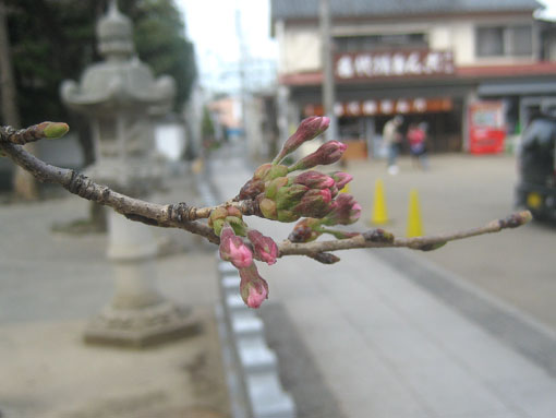 10-03-23-04.jpg